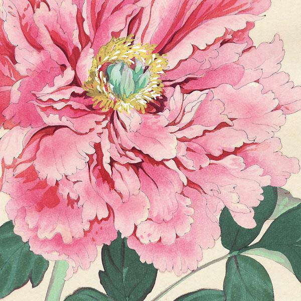 Imperial Exhibition Peony by Tanigami Konan (1879 - 1928)