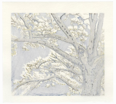 Drastic Price Reduction Moved to Clearance, Act Fast! by Koichi Maeda (born 1936)