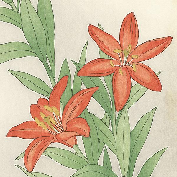 Red Star Lily by Kawarazaki Shodo (1889 - 1973)
