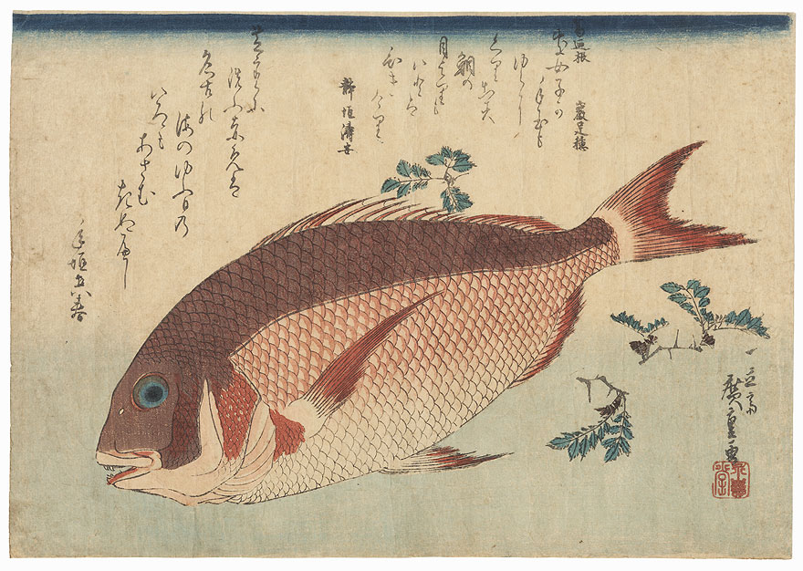 Sea Bream and Sansho by Hiroshige (1797 - 1858)