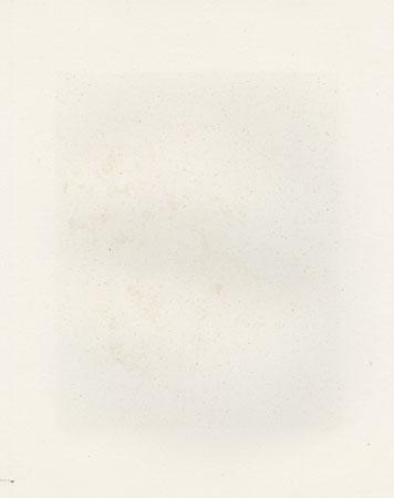 No. 194 (Three Camellias) by Yukio Katsuda (born 1941)