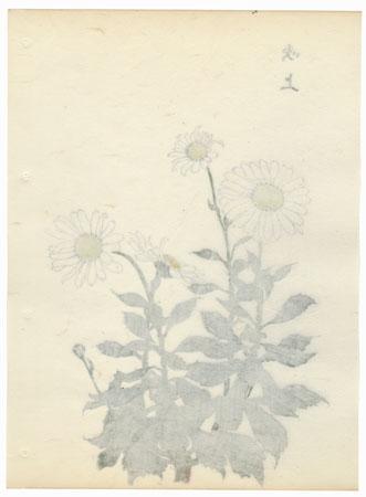 Top Chrysanthemums by Keika Hasegawa (active 1892 - 1905)