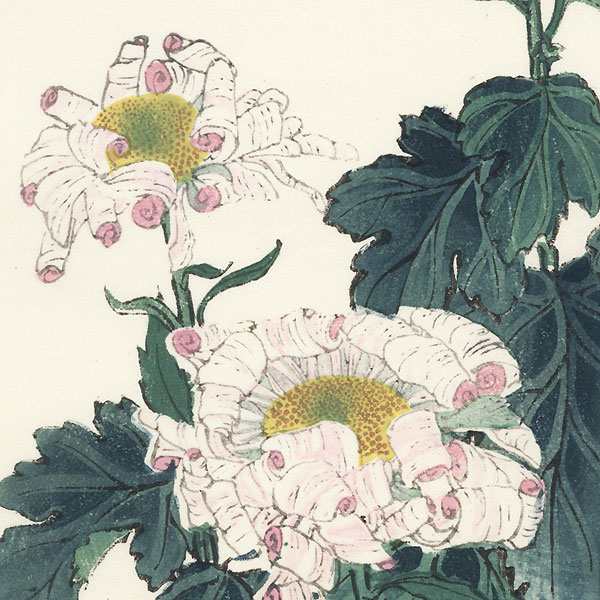 Dance in Three Variations Chrysanthemum by Keika Hasegawa (active 1892 - 1905)