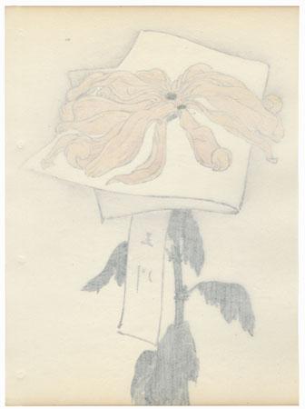 Golden River Chrysanthemum by Keika Hasegawa (active 1892 - 1905)