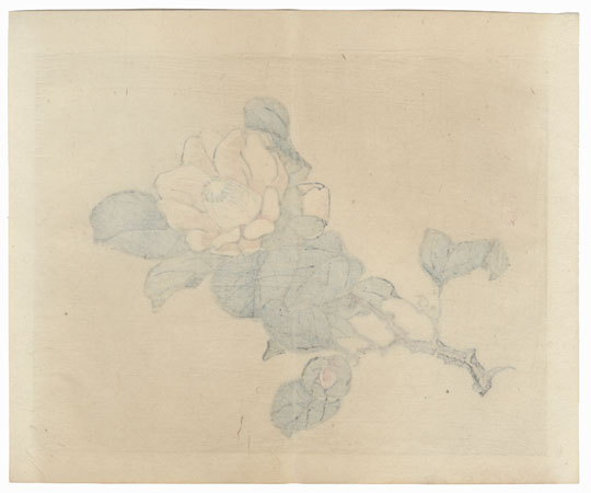 Pink and White Blossom by Bairei (1844 - 1895)