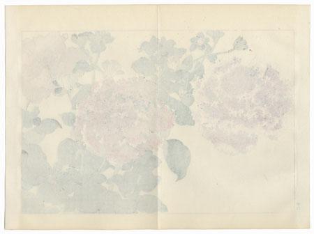 Petunia by Tanigami Konan (1879 - 1928)