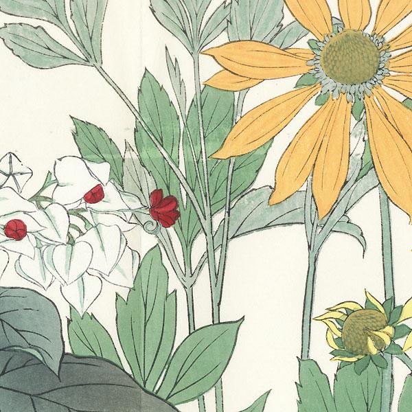 Rudbeckia Clerodendrum by Tanigami Konan (1879 - 1928)