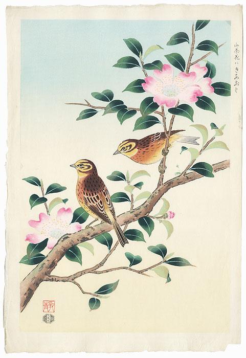 Yellow Finch and Camellia by Shizuo Ashikaga (1917 - 1991)