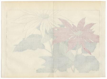 Poinsettia by Tanigami Konan (1879 - 1928)