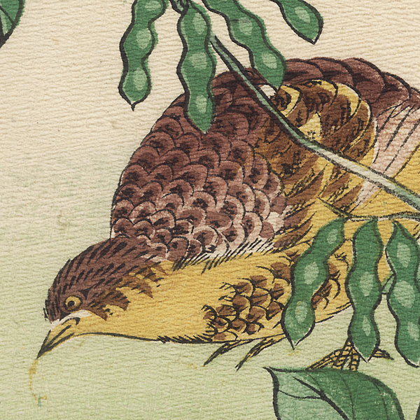 Quail and Soybean Plant by Meiji era artist (not read)