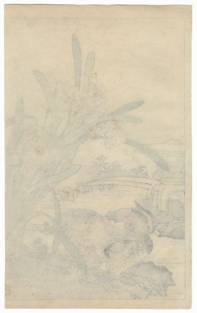 Mandarin Ducks and Narcissus by Kono Bairei (1844 - 1895)