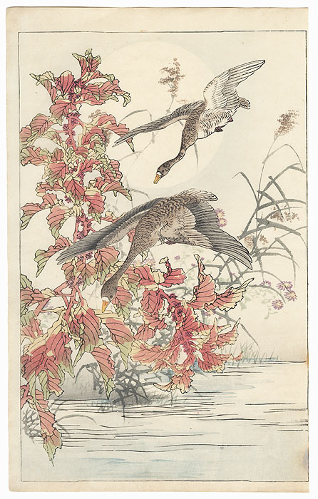 Geese and Amaranthus by Kono Bairei (1844 - 1895)
