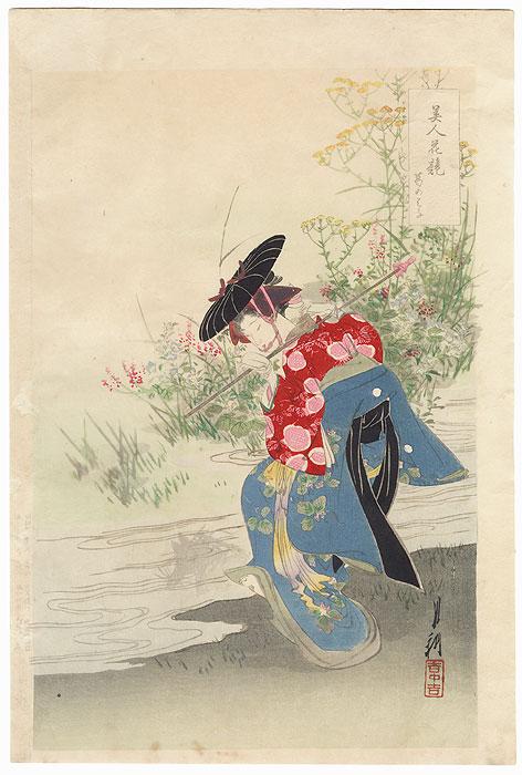 Arrowroot by Gekko (1859 - 1920)