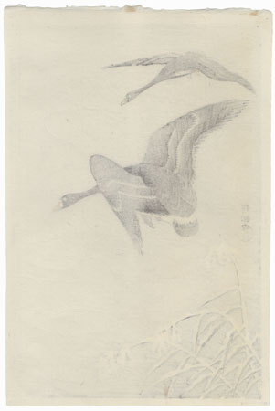 Two White-fronted Geese Flying in Snow by Ohara Shoson (1877 - 1945)