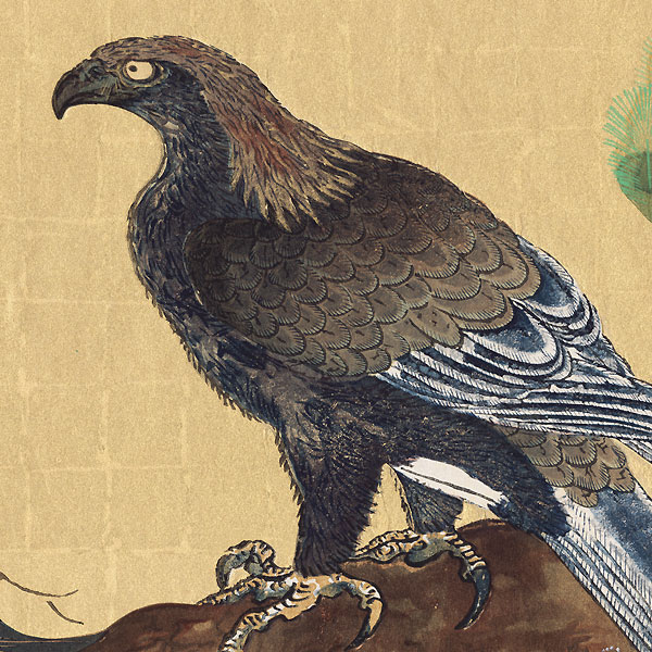 Hawk and Pine by Kano Tan'yu (1602 - 1674)