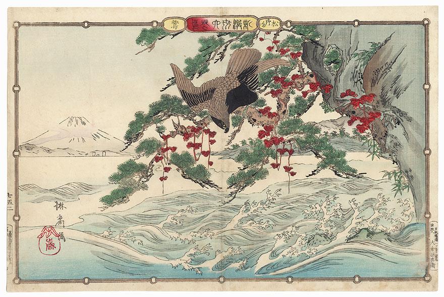 Falcon and View of Mt. Fuji by Rinsai (1847 - ?)