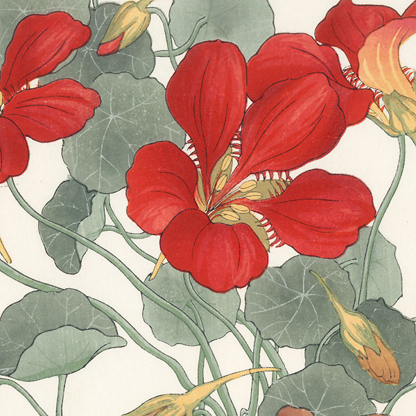 Nasturtium by Tanigami Konan (1879 - 1928)