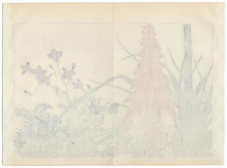 Lobelia and Tritoma by Tanigami Konan (1879 - 1928)