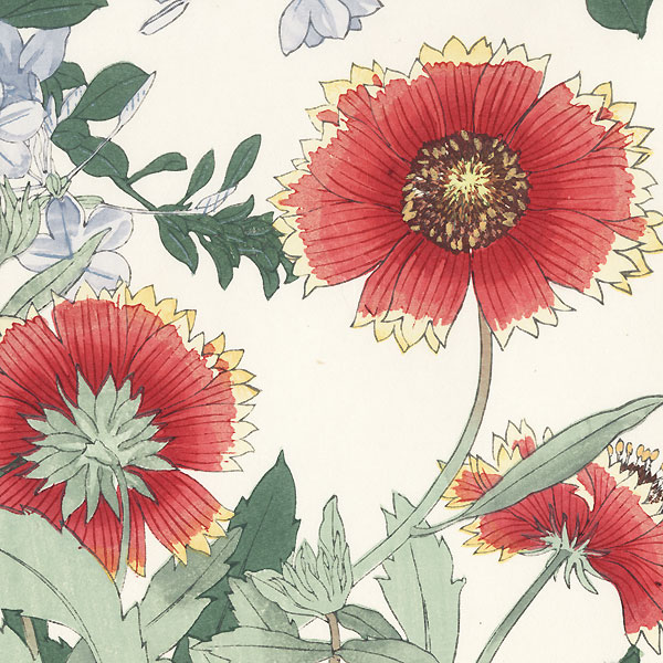 Plumbago and Gaillardia by Tanigami Konan (1879 - 1928)