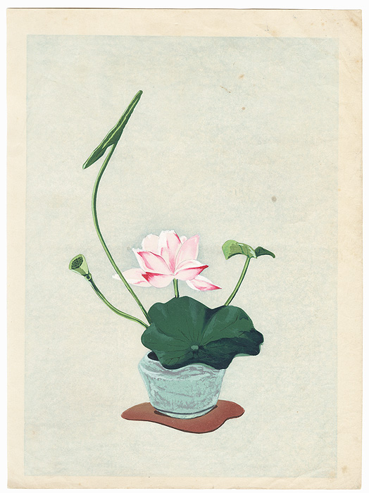 Lotus Blossom Flower Arrangement by Shin-hanga & Modern artist (unsigned)