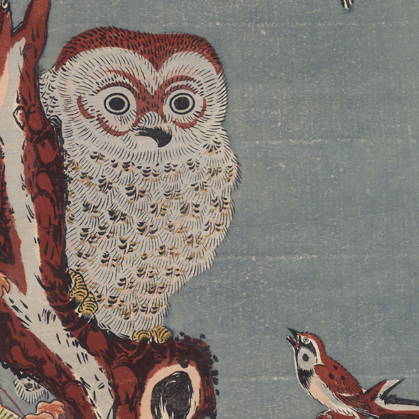 Owl in a Pine Tree by Edo era artist (unsigned)