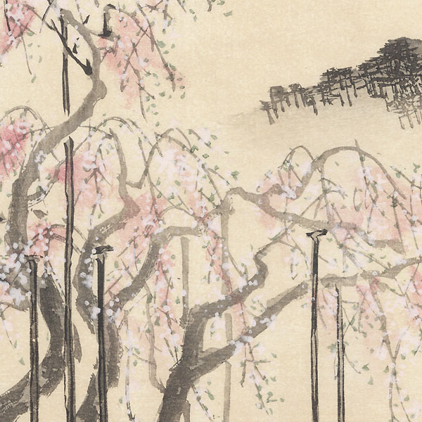 Weeping Cherry Tree, Gion, 1894 by Shokei