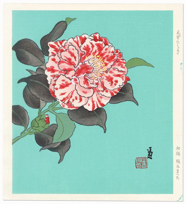 Camellia by Tokuriki (1902 - 1999)