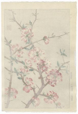 Heath Rose by Kawarazaki Shodo (1889 - 1973)