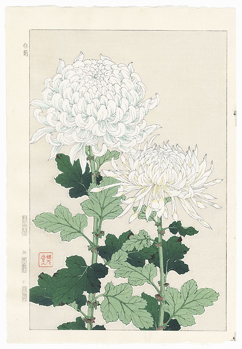 White Chrysanthemums by Kawarazaki Shodo (1889 - 1973)