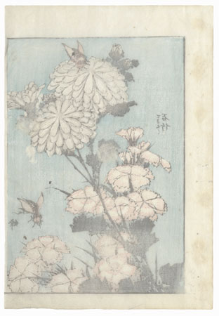 Blossoms and Insects by Hokusai (1760 - 1849)