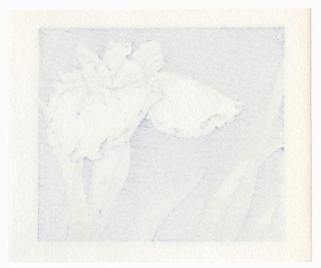 White Iris, 1987 by Kieko Tsurusawa (born 1942)