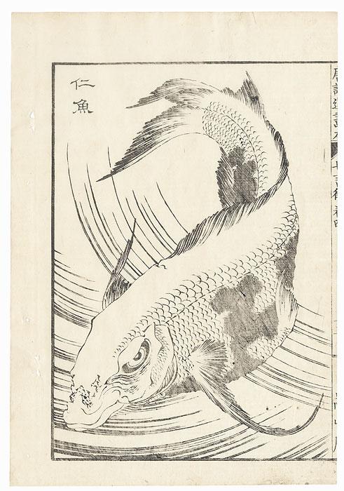 Fish, 1836 by Hokusai (1760 - 1849)