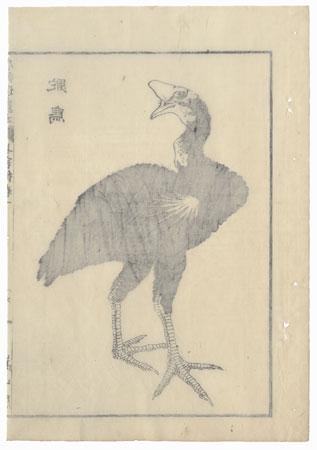 Ostrich, 1836 by Hokusai (1760 - 1849)