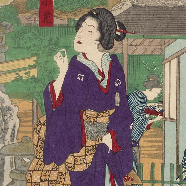 Hiro-Iwa Restaurant in Mukojima by Kunichika (1835 - 1900)