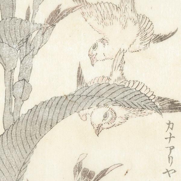 Birds and Plant by Hokusai (1760 - 1849)