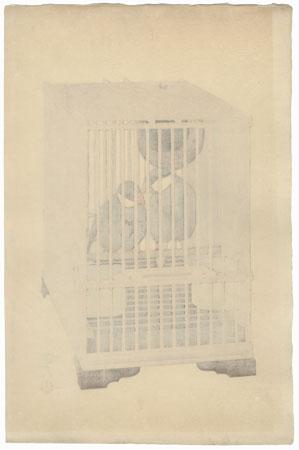 Buncho (Java Sparrow), 1927 by Toshi Yoshida (1911 - 1995)