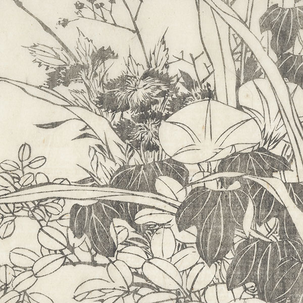 Morning Glories and Foliage by Hokusai (1760 - 1849)