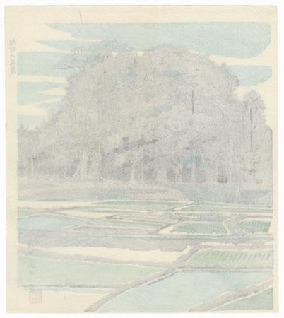 Rice Fields by Tokuriki (1902 - 1999)