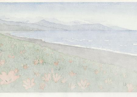 Spring: Shiretoko National Park by Seiji Sano (born 1959)