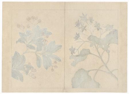 Winter Flowers, 1907 by Tomioka Tessai (1836 - 1924)