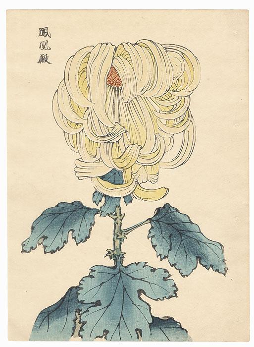 Phoenix Palace Chrysanthemum by Keika Hasegawa (active 1892 - 1905)