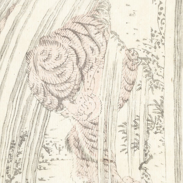 Tiger in a Waterfall by Hokusai (1760 - 1849)