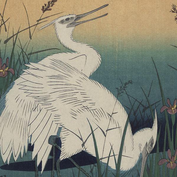 White Herons and Iris by Hiroshige (1797 - 1858)