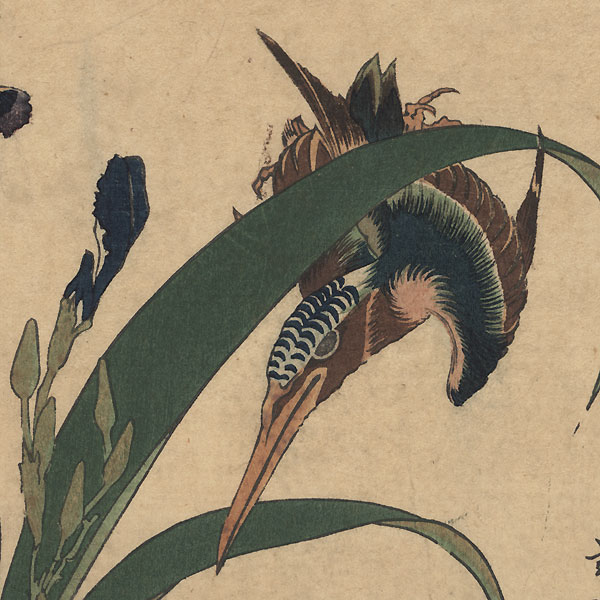 Kingfisher with Iris and Wild Pinks  by Hokusai (1760 - 1849)