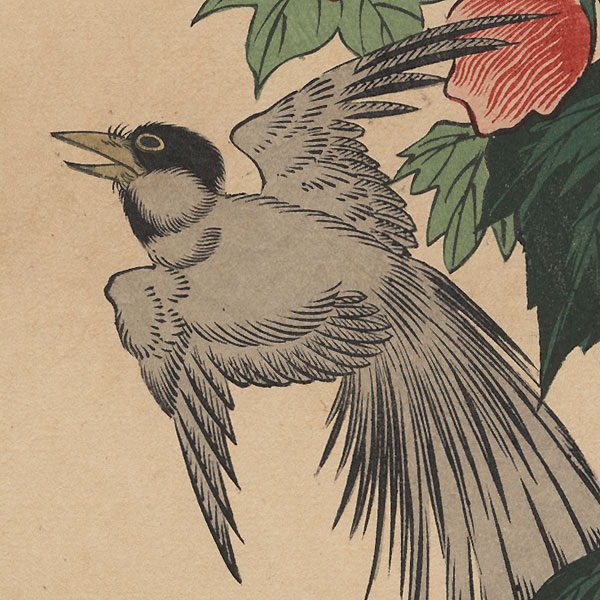 Long-tailed Bird and Red Blossoms by Hiroshige (1797 - 1858)