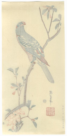 Aronia and Parrot by Hiroshige (1797 - 1858)