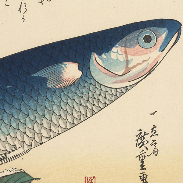 Gray Mullet, Camellia, and Udo by Hiroshige (1797 - 1858)