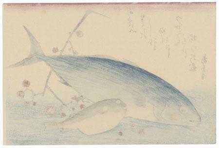 Fuji Arts Japanese Prints - Yellowtail, Blowfish, and Plum