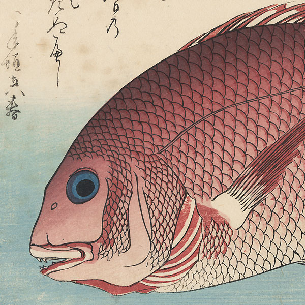 Sea Bream and Sansho by Hiroshige (1797 - 1858)