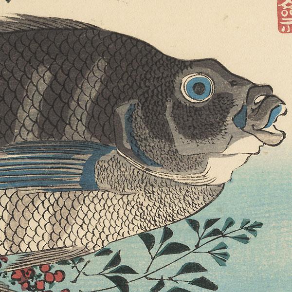 Shimadai, Ainame, and Nandina by Hiroshige (1797 - 1858)